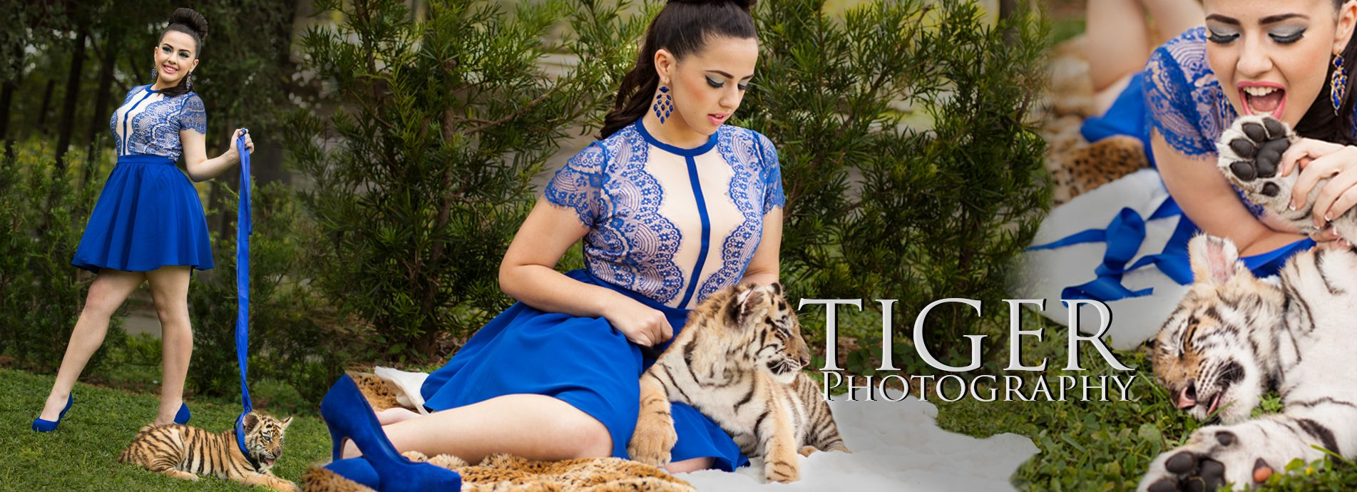 quinceanera photography tiger themes